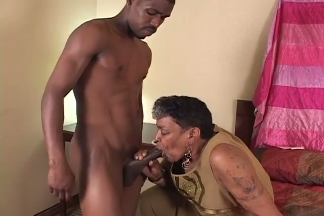 ebony old enjoys the inexperienced penis